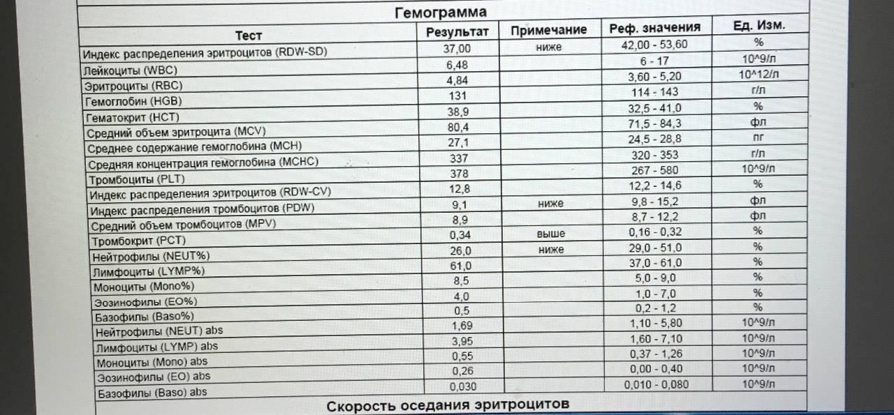Rdw в анализе крови: что это, почему повышен. норма и расшифровка результата - kardiobit.ru