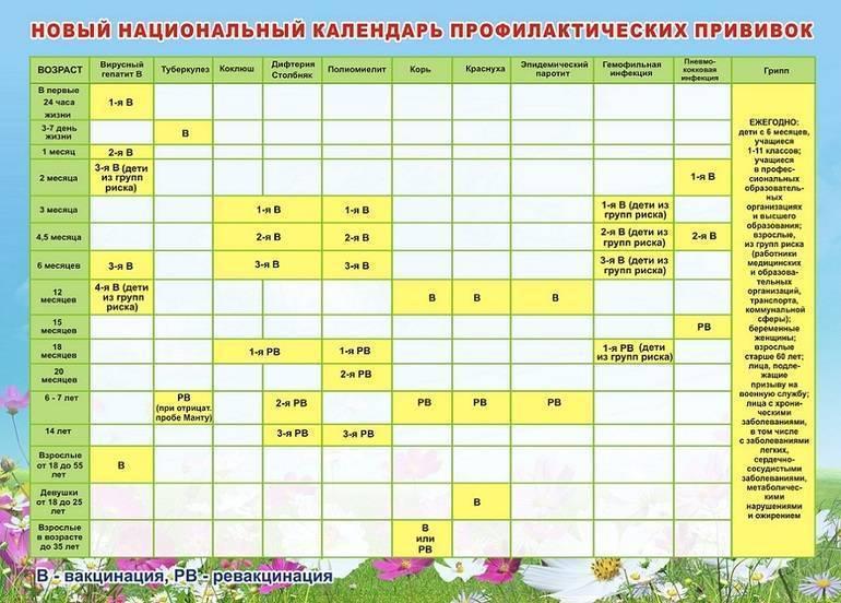 Календарь прививок 2020: график прививок для детей в 2020 году