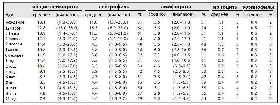 Лимфоциты в крови: норма у детей по возрасту