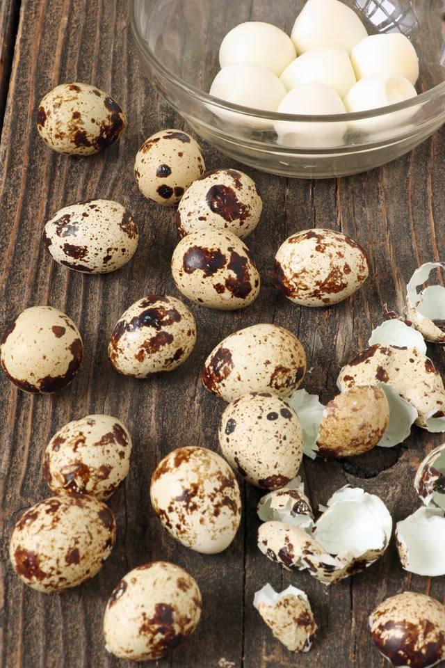 Перепелиные яйца: сколько по времени варить мин после закипания, как долго можно, чтобы были в мешочек, как надо правильно вкрутую для салата, полезны ли ребенку?