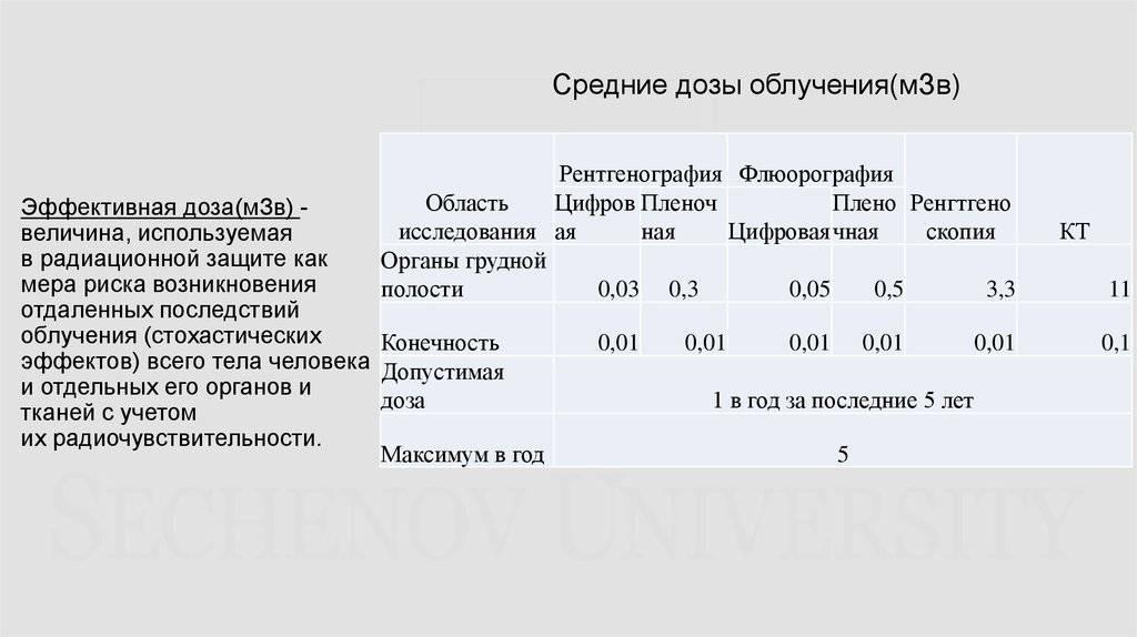 Рентген придаточных пазух и костей носа ребенку и взрослому