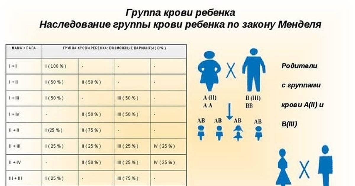 Какая группа крови будет у ребенка от родителей: таблица. какие группы крови несовместимы или совместимы для зачатия: с какой группой крови нельзя иметь детей?
