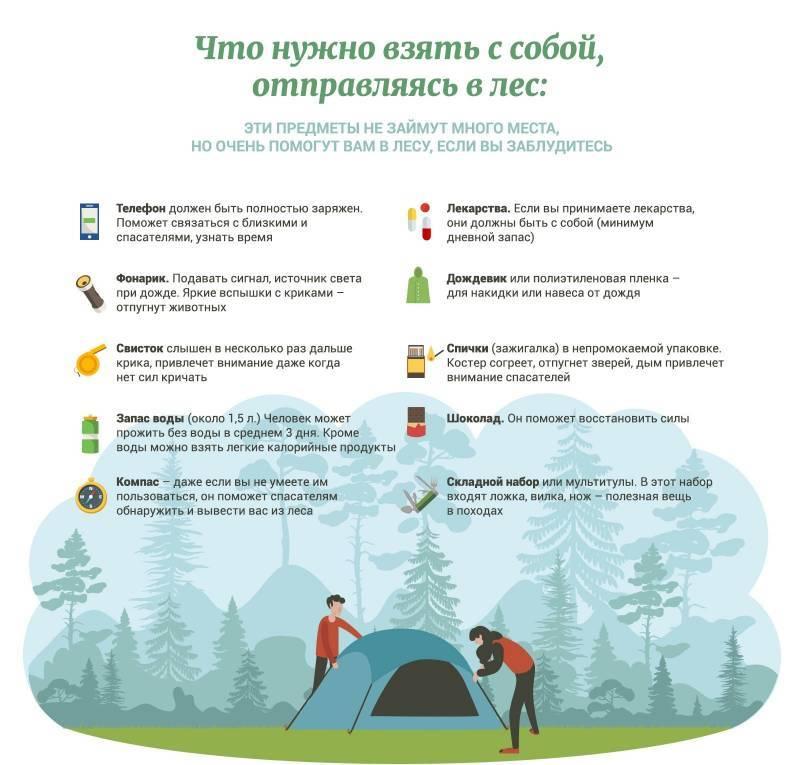 «важно поднять народ как можно скорее». организатор поисков пропавших детей о том, что надо знать всем - properm.ru