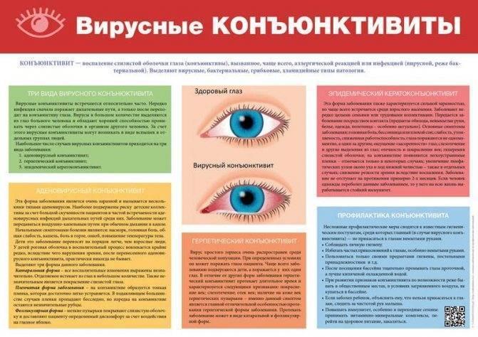 Диагностика глаз при беременности