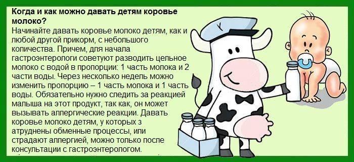 Козье молоко для детей: когда можно и как давать?