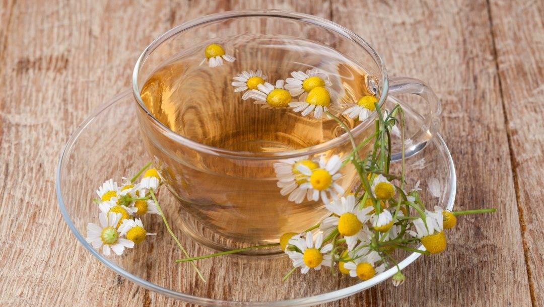 Ромашка для грудничка: ромашковый чай, ванночки и ингаляции