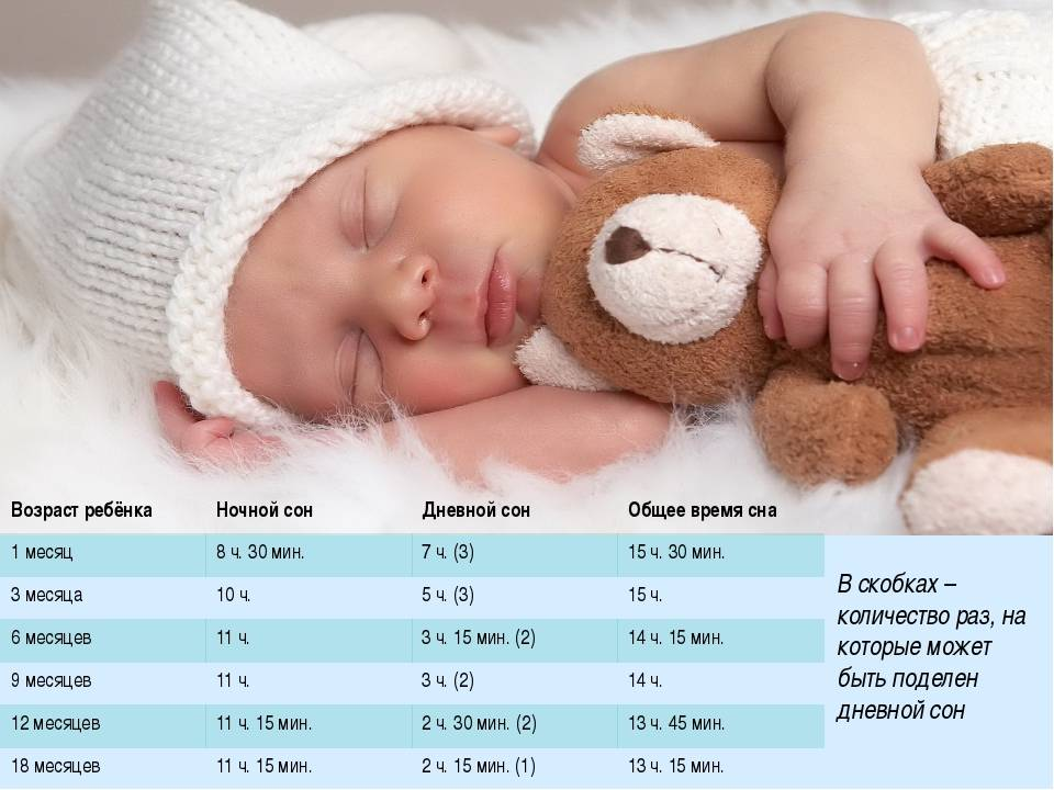 Режим дня ребенка в 11 месяцев: сколько он должен спать, режим кормления и прочие вопросы + фото