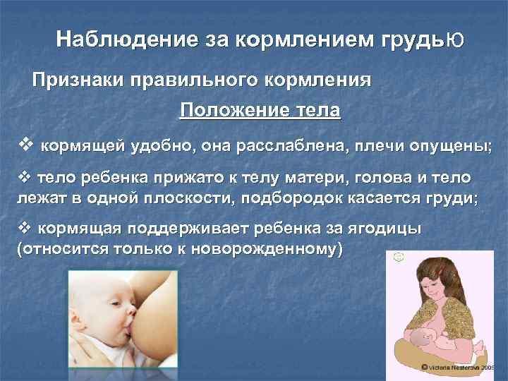 Правильное прикладывание к груди — залог успешного грудного вскармливания