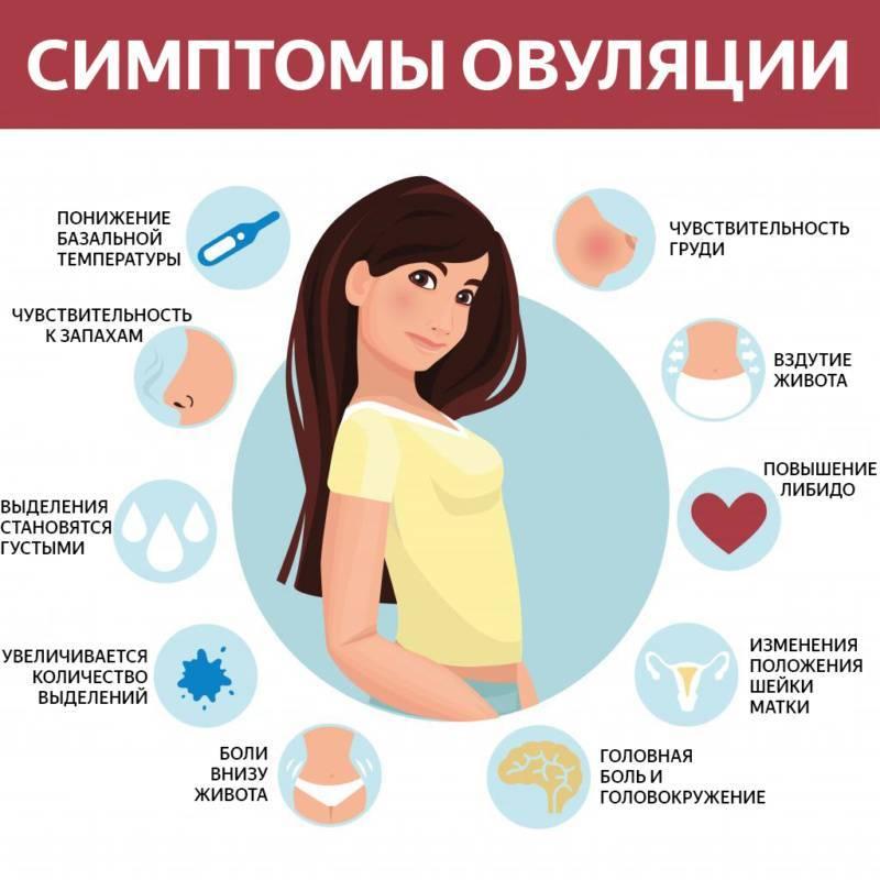 На какой день после зачатия начинает болеть молочные железы