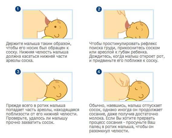 Правильное грудное вскармливание - главные правила кормления грудью