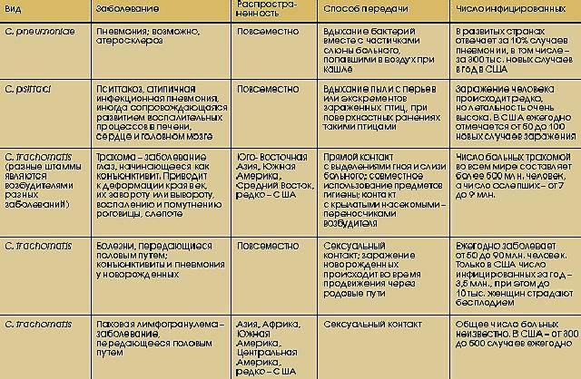 Инфекции на двоих - заболевания, передающиеся половым путем