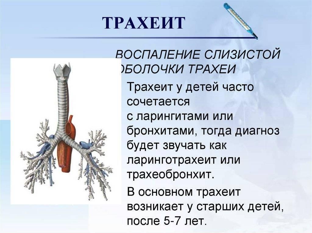 Трахеобронхит. симптомы острого трахеобронхита у детей. лечение трахеобронхита