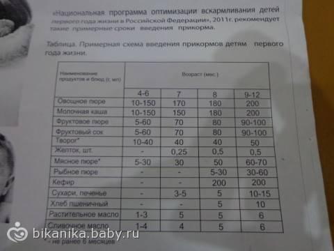 Сколько должен съедать ребенок в 6 месяцев