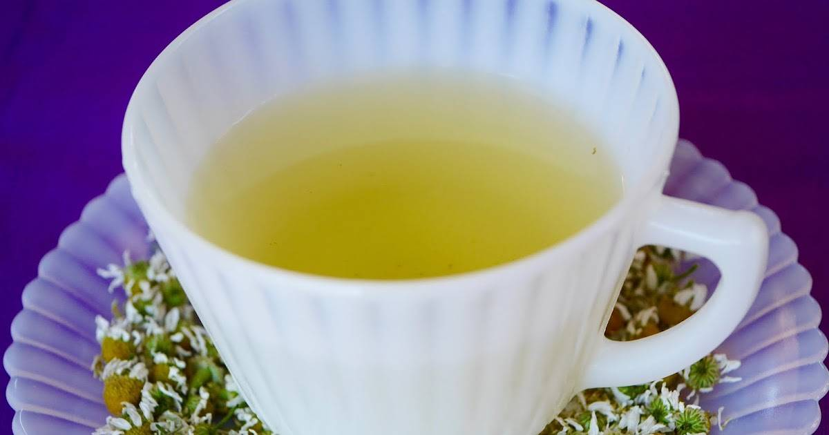 Ромашковый чай: польза и свойства. как принимать ромашковый чай?