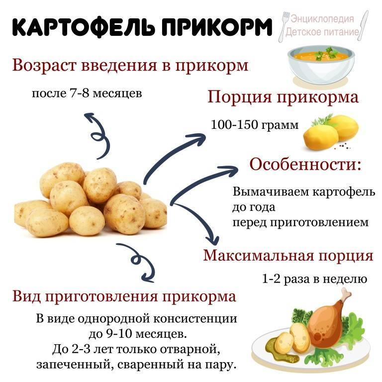 Со скольки месяцев можно давать ребенку картофельное пюре