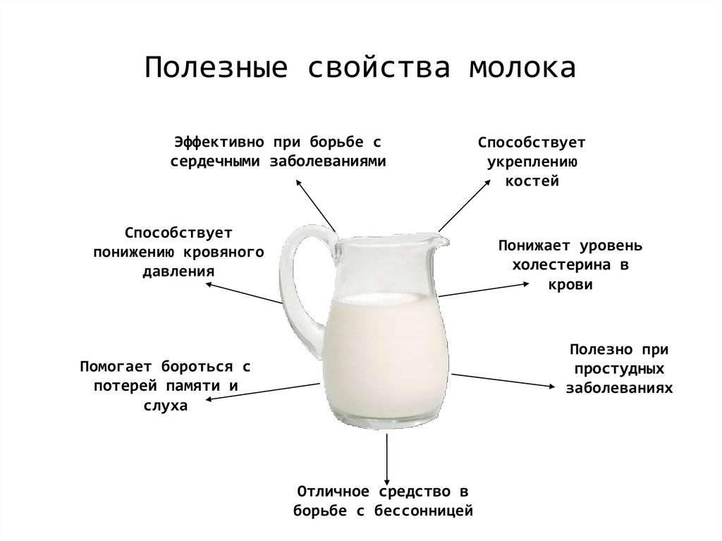 Молоко грудное женское — химический состав, пищевая ценность, бжу