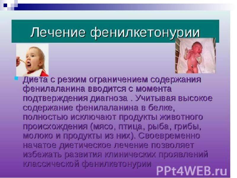 Фенилкетонурия (фку) - причины, симптомы, диагностика и лечение фенилкетонурии: диета и питание :: polismed.com