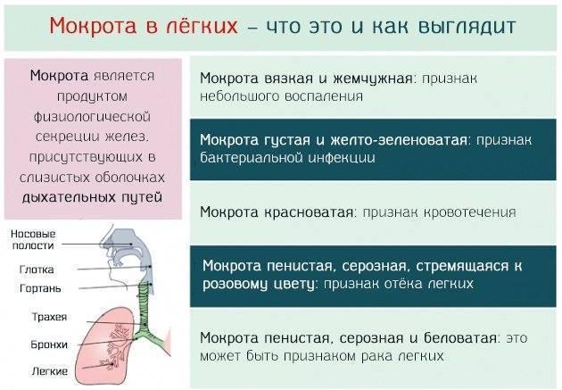 Кашель с мокротой : причины и лечение | компетентно о здоровье на ilive
