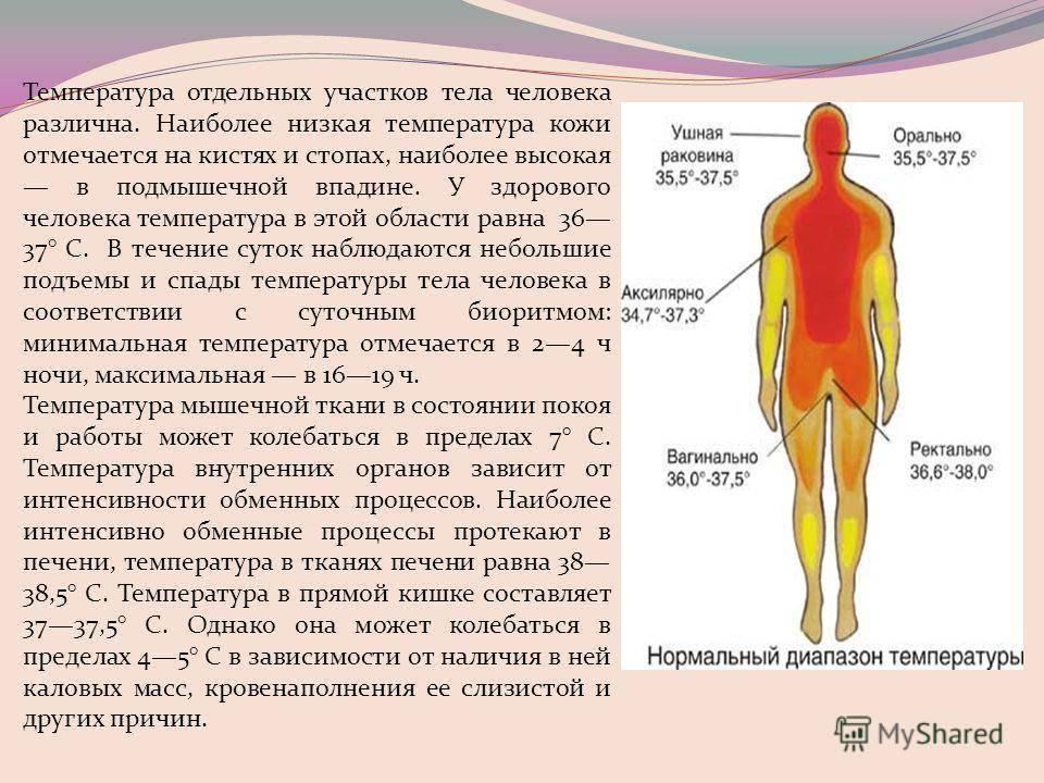 Субфебрилитет