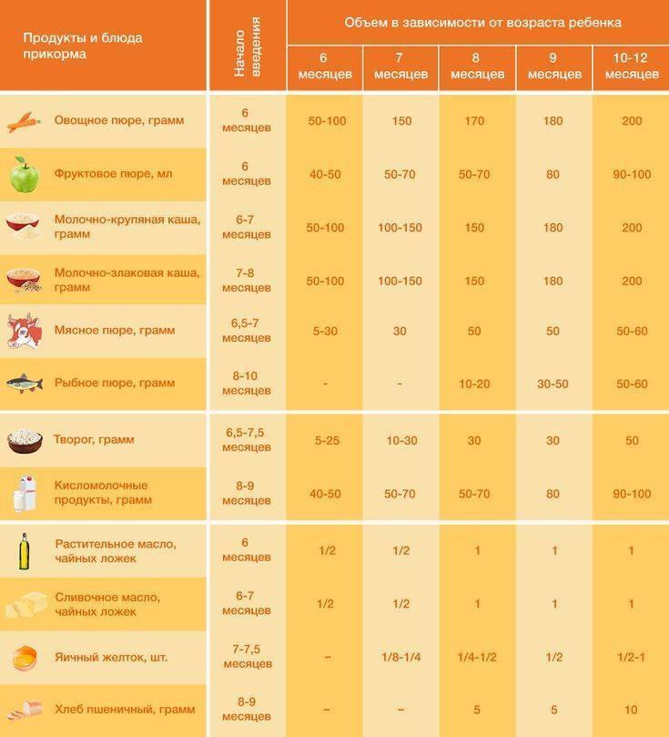 Прикорм ребенка: варианты схем, сроки и правила введения прикорма