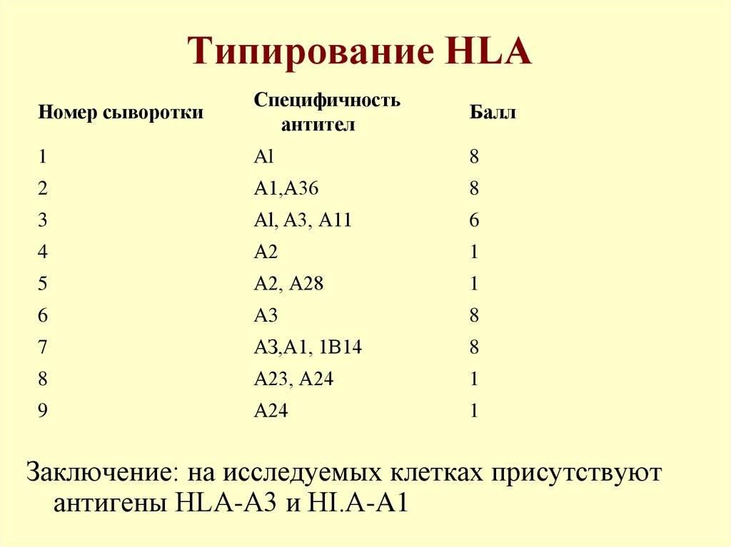 Анализ на hla, трактовка