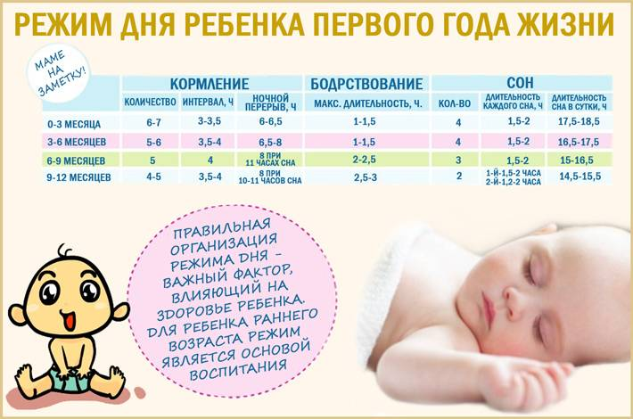 Режим дня ребенка в 1 месяц (месячного, младенца, грудничка)