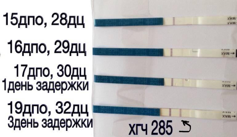 Анализ крови на хгч: когда сдавать и на каком сроке покажет беременность