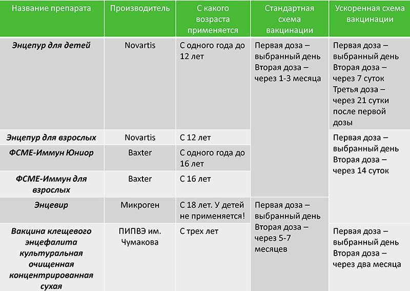 Прививка от клещевого энцефалита детям: противопоказания, схема и график вакцинации