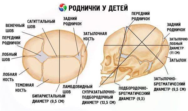 Почему у грудничка пульсирует родничок, нормально ли это: ищем причины пульсации