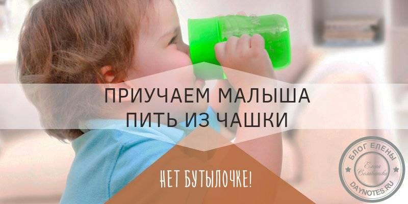 Как научить ребенка пить из чашки: 11 составляющих успеха