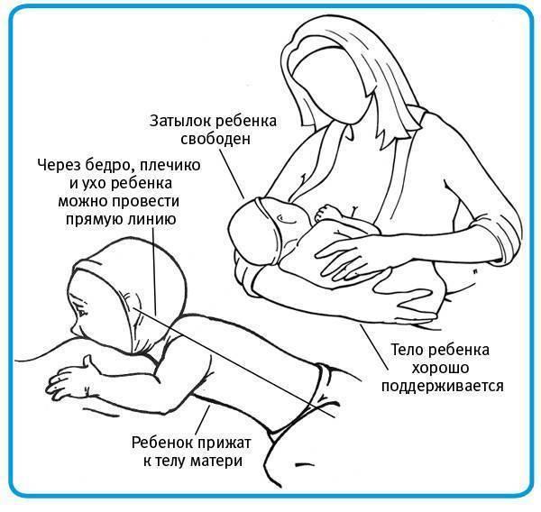 Что такое докорм, когда он необходим и как правильно докармливать ребенка при гв