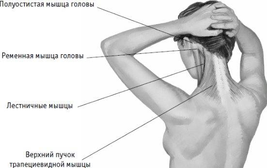 Головная боль и болит шея