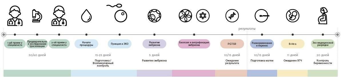 Зачем мы проводим генетическое тестирование доноров ооцитов? | линия жизни центр репродукции