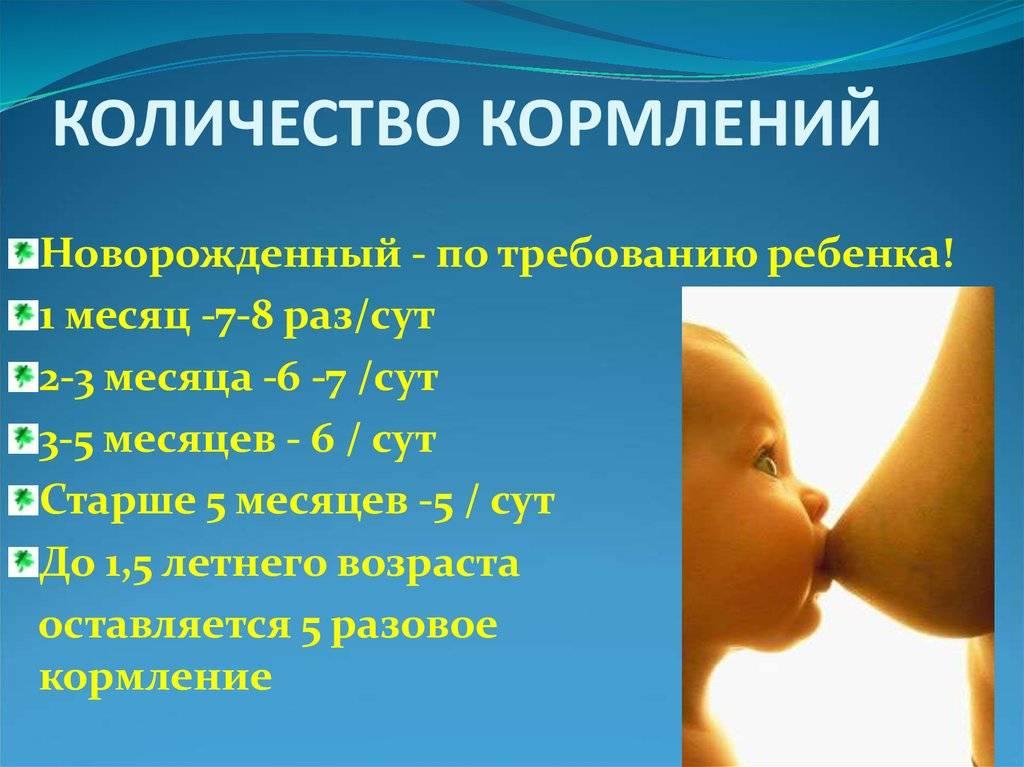Как долго кормить ребенка грудью. сколько месяцев кормить ребенка грудным молоком