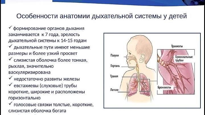 Почему грудничок часто дышит во сне