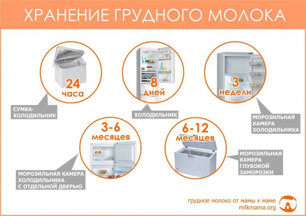 Сколько хранится грудное молоко: условия хранения при комнатной температуре и в холодильнике