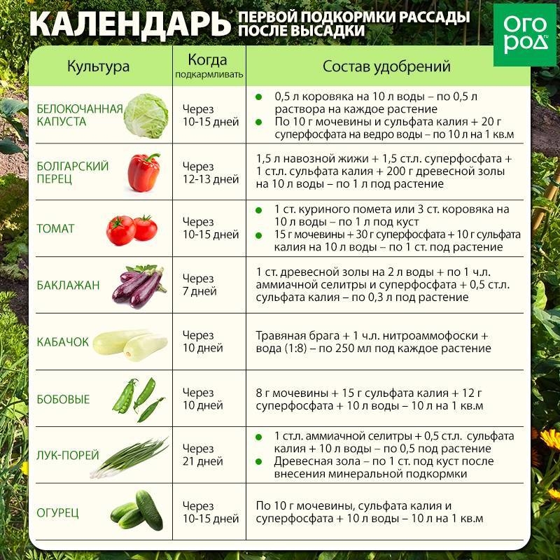 Огурцы при гастрите: можно или нет? | компетентно о здоровье на ilive