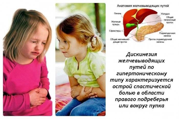 Дискинезия желчных путей (джвп)   клиника семейный доктор