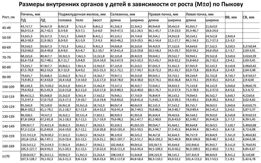 Размеры печени в норме по узи у детей: таблица с показателями