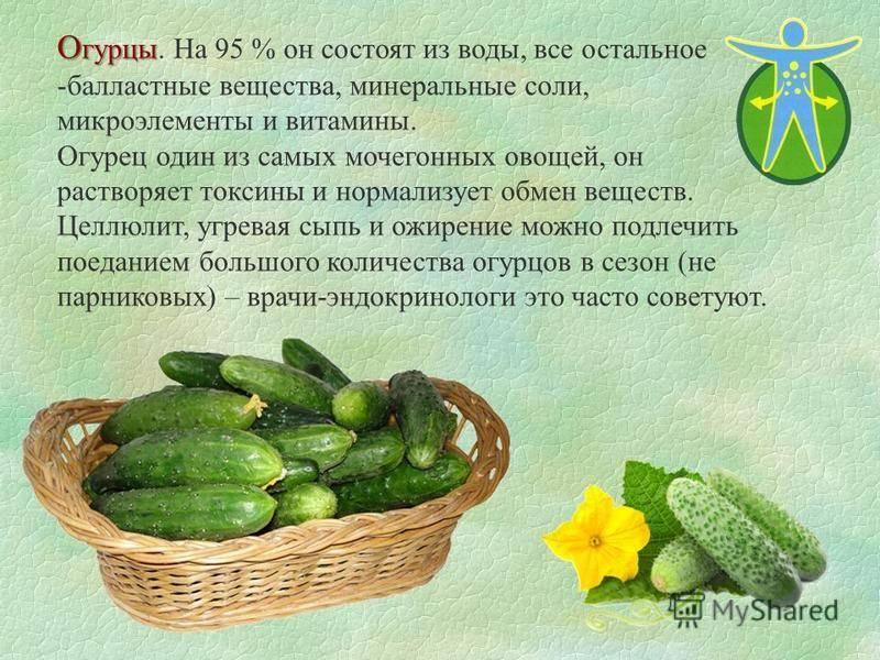 Помидоры при подагре : подагра vs помидоров? | компетентно о здоровье на ilive
