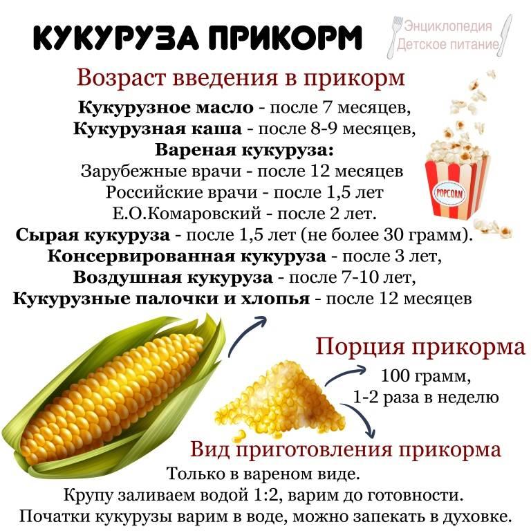 С какого возраста можно давать ребенку кукурузу
