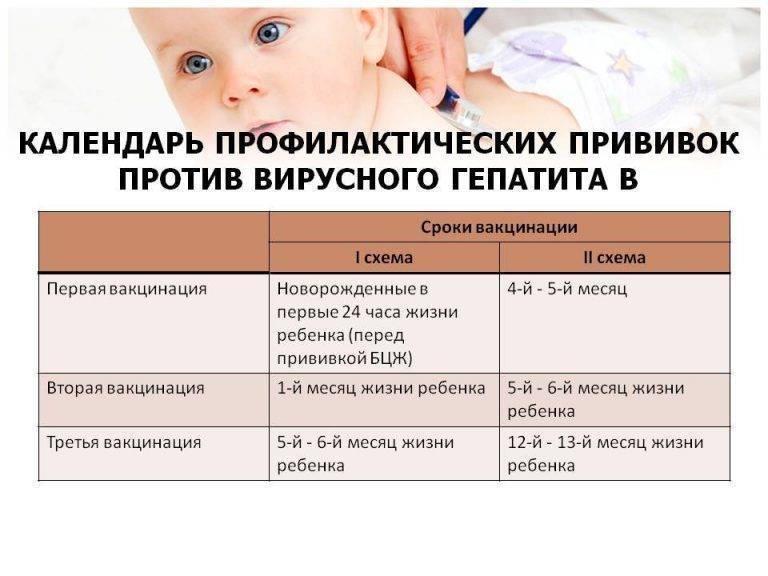 Нужно ли купать ребенка каждый день   детская городская поликлиника № 32