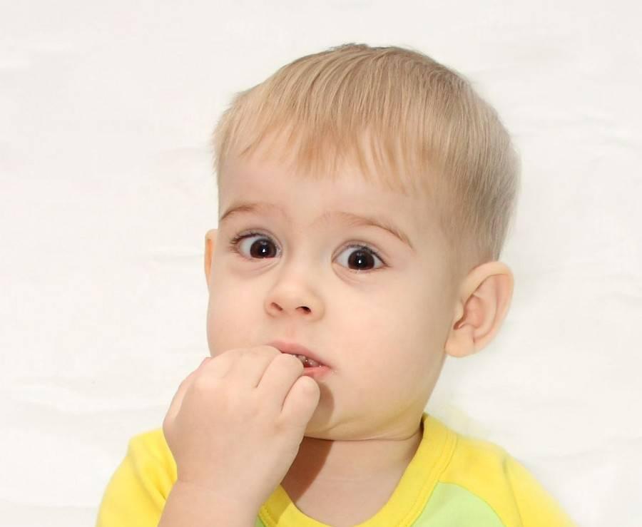 «янаучился бить»: как отучить ребенка кусаться идраться в1год