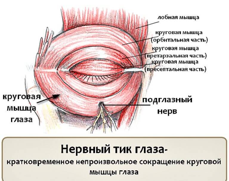 Невротические расстройства личности: лечение, симптомы