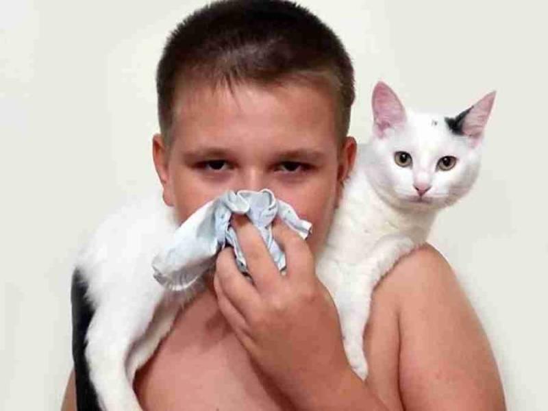 Аллергия на плесень и грибок у ребенка - симптомы