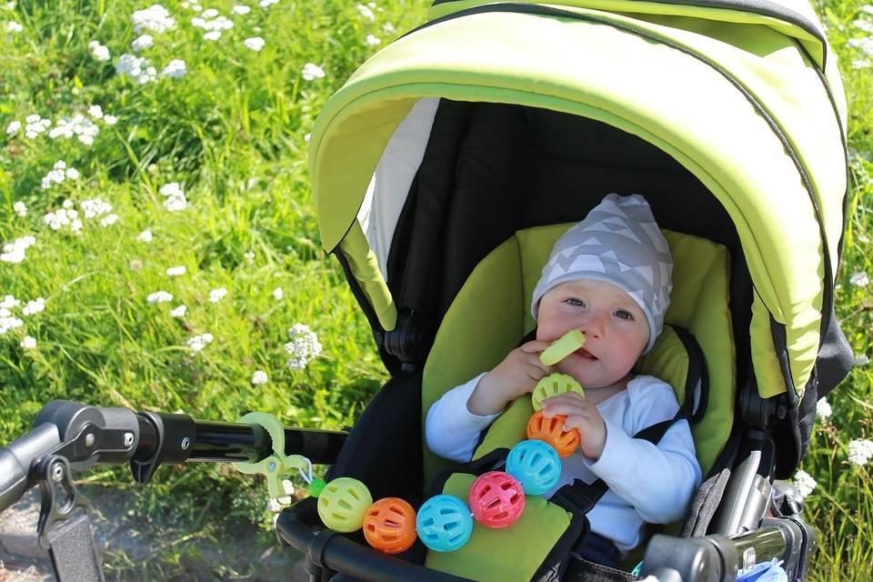 Летние коляски для новорожденных: советы по выбору