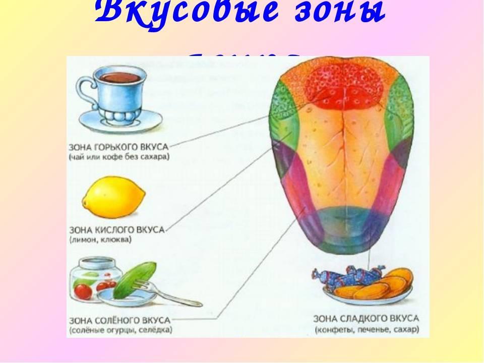 Привкус кислого во рту: причины, лечение неприятного симптома   food and health