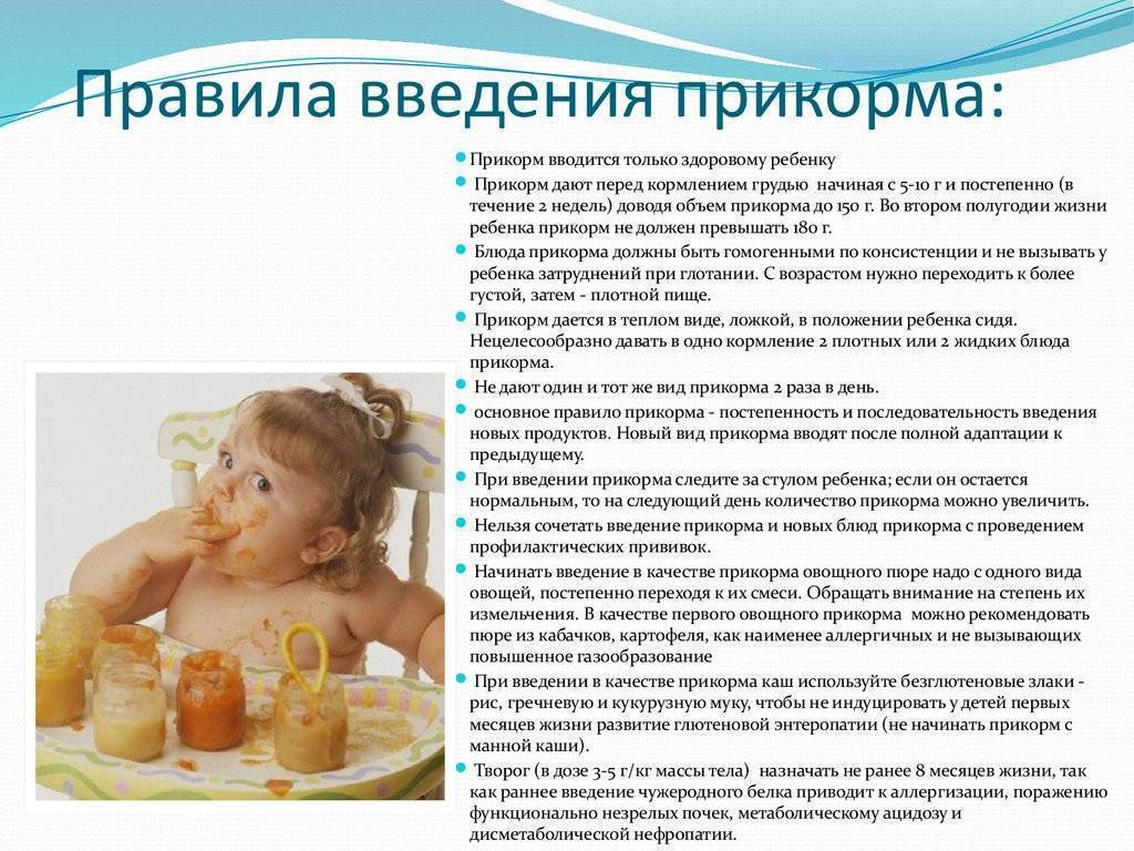 Ребенку 3 месяца: что можно вводить из питания кушать и пить, чем подкармливать