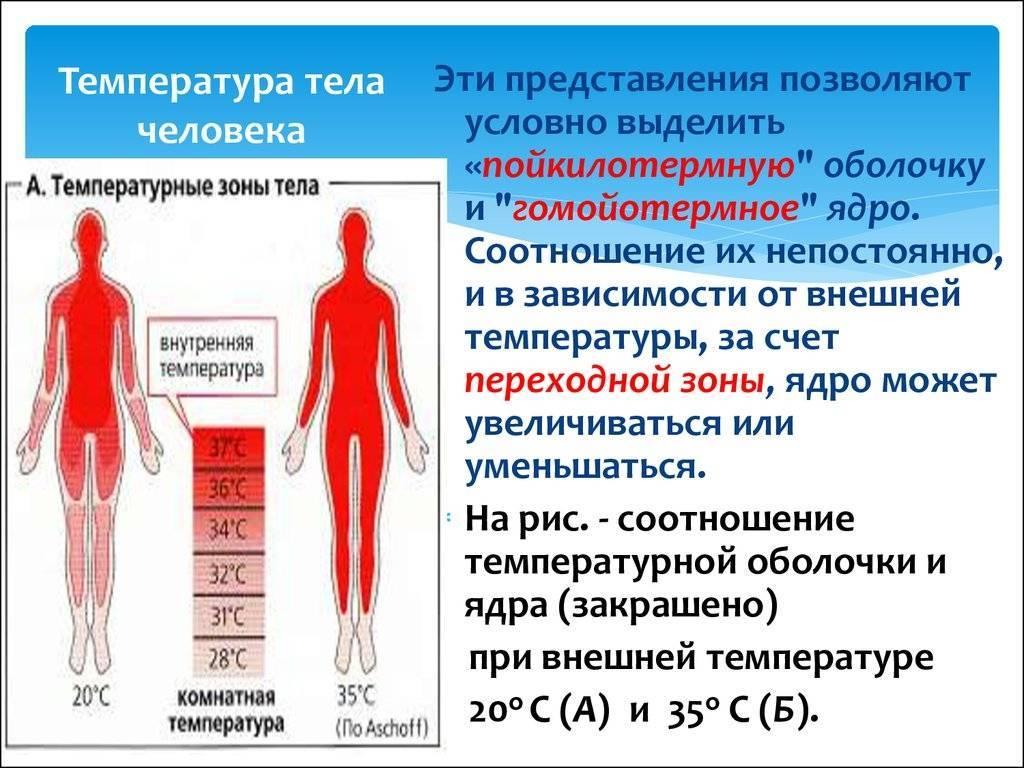 Повторный подъем температуры при орви: что делать, если болезнь не хочет уходить?