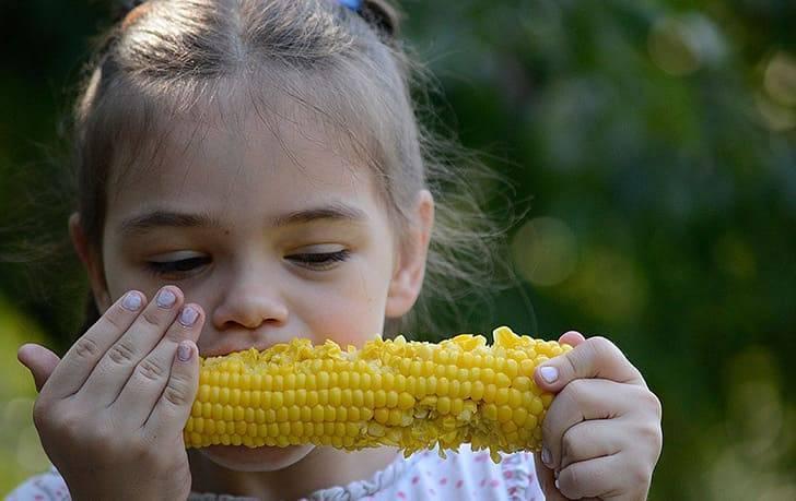 Вареная кукуруза польза или вред для здоровья